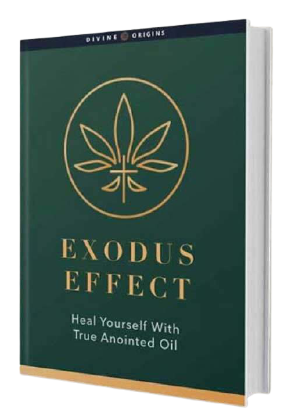 Exodus Effect reviews