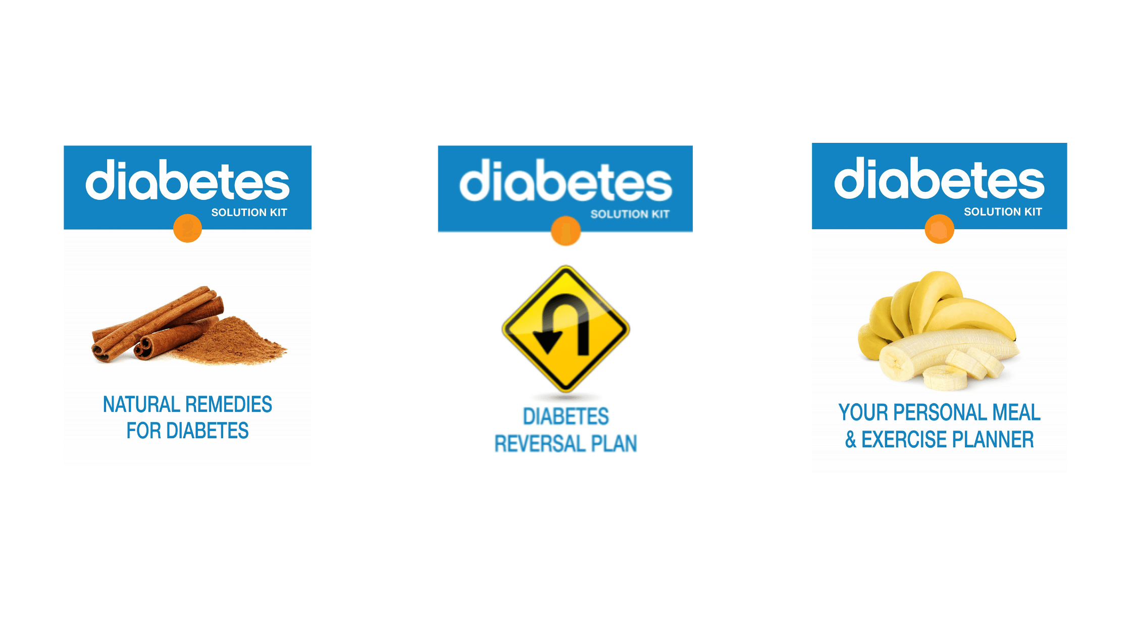 Diabetes Solution Kit - Included